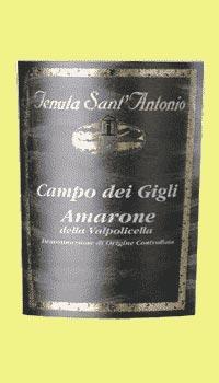 Sant`Antonio Amarone DOC 2011