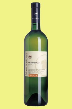 Settesoli Chardonnay 2008